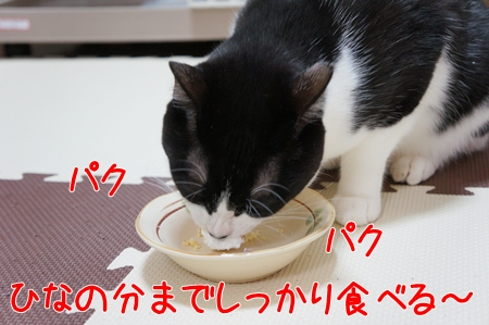 ひなの分も食べる