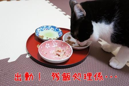 3残飯処理