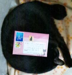 c121020切手
