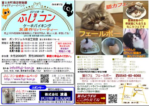 fujikon3_convert_20140211223743.png