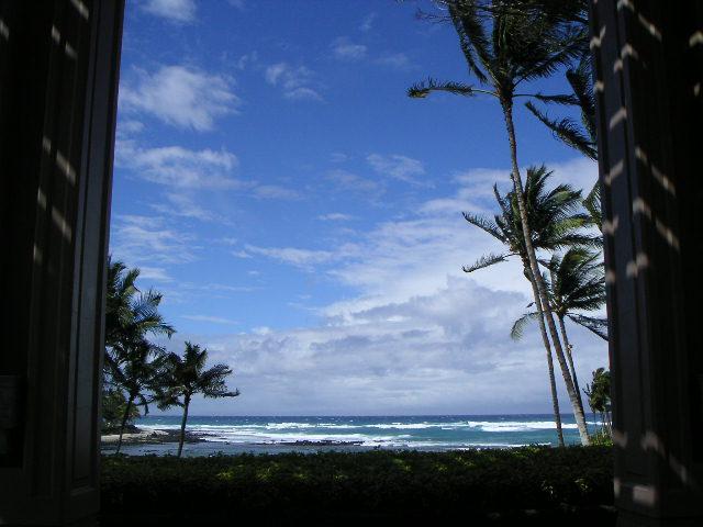 hawai14.jpg