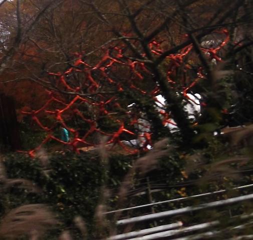 登山鉄道風景7(彫刻の森)