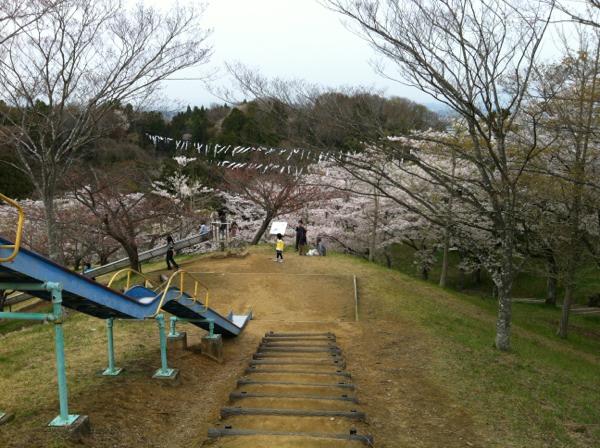 松島 市 天気 東