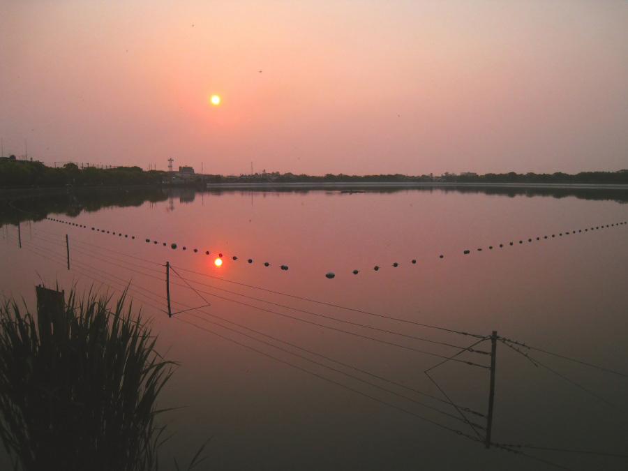 静かな早朝、二つの朝陽@瑞ヶ池公園(by IXY DIGITAL 910IS)