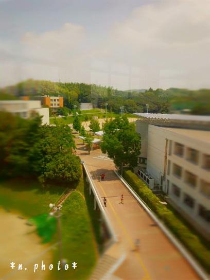 大学 (2)