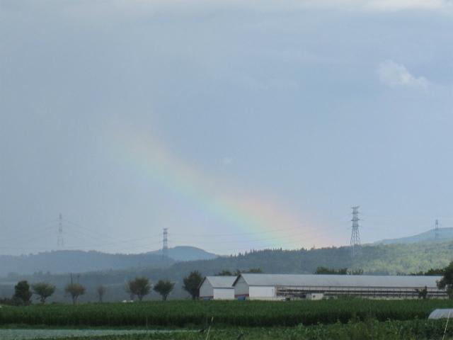 にわか雨の後の虹