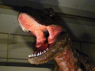 恐竜博 (21)