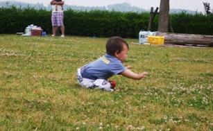芝生であそぼ