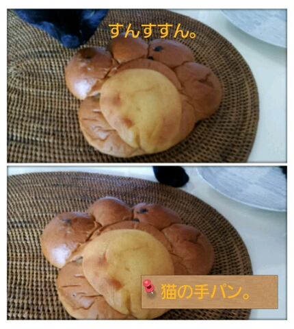 食 (5)