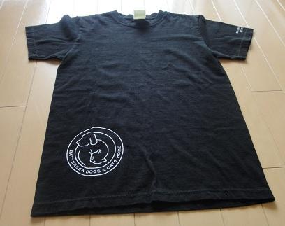 Tシャツ (1)