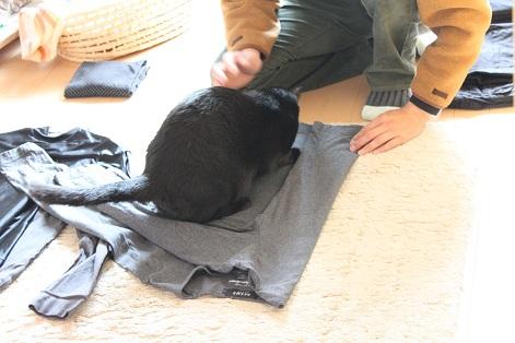 洗濯もん (4)
