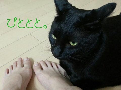甘えっ子 (2)