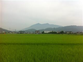 画像 009_R