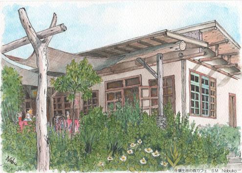 千葉生命の森カフェ