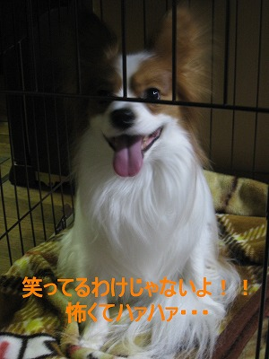 IMG_2299 1