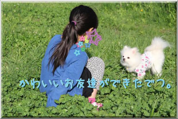 66NYacF1D0TVCdG_convert_20120519003039.png