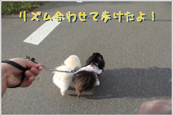 l4bD6KlFtbgVxox.jpg