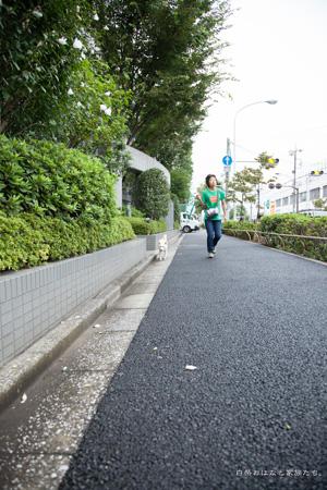 20120922-_MG_2278.jpg