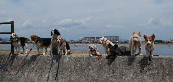 2012・08.12甲子園浜3