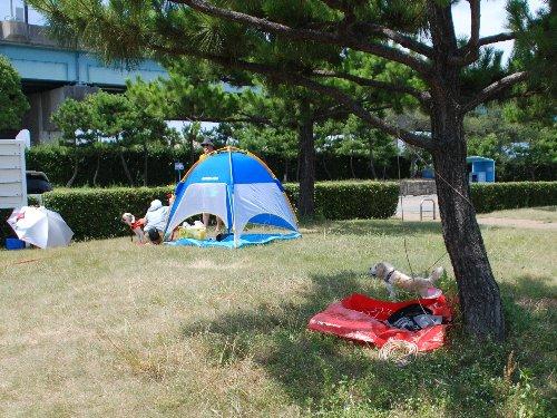 2012・08.12甲子園浜2