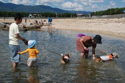 2012・08・25潮芦屋浜1