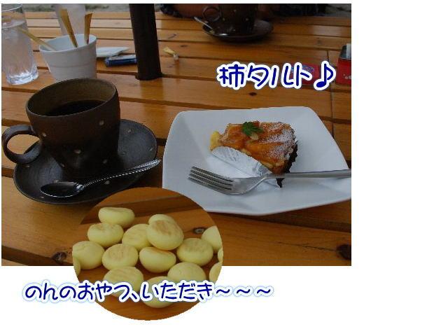2012・10・14黒枝豆取り6