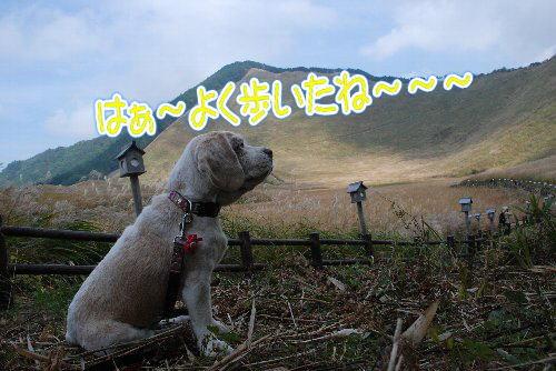 2012・10・20曽爾高原6