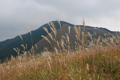 2012・10・20曽爾高原1