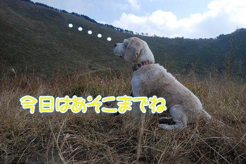 2012・10・20曽爾高原2
