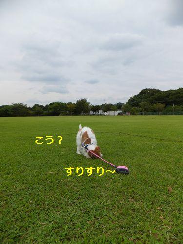 2012062803.jpg