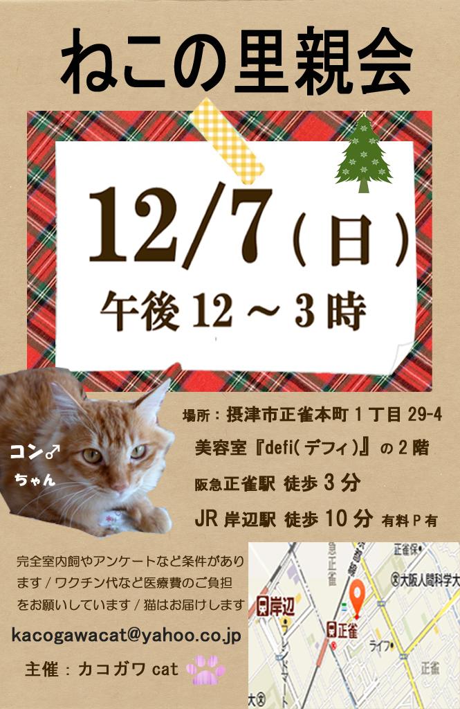 20141207-01のコピー