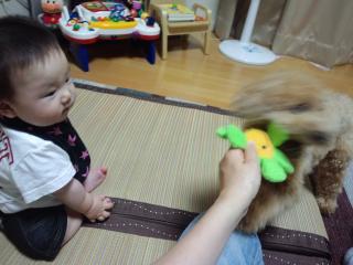 PAP_0006_convert_20120702104826.jpg