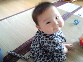 PAP_0008_convert_20120620215148.jpg
