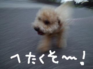 snap_norichisa_201270111246.jpg
