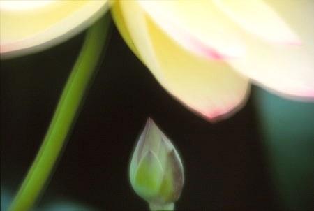 20120711_noririn.jpg