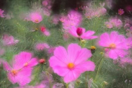 20121015_noririn.jpg