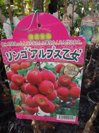 リンゴアルプス乙女