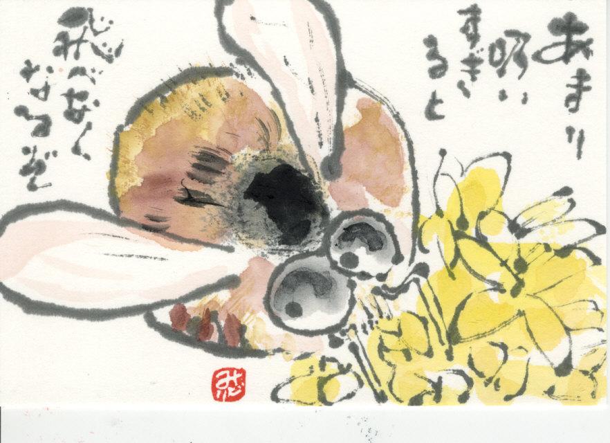燕蜂花_0003