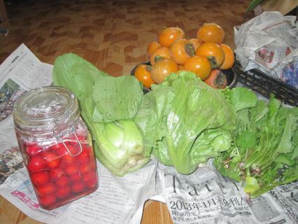 岡本さんからの野菜 002