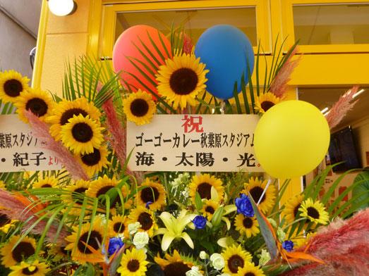 ゴーゴーカレー秋葉原スタジアム店55円008