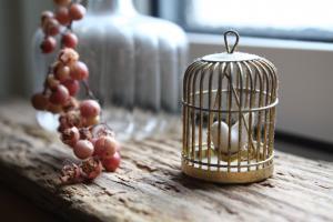 窓辺の小鳥ちゃん