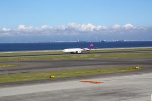 タイ航空、これこれ!