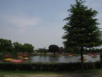 水上自転車ボート