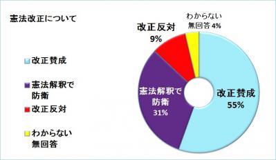 憲法改正(円グラフ)