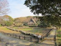 宮地嶽神社0012
