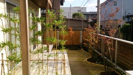 大名竹とお庭