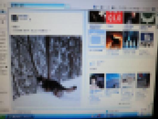 CIMG7102_convert_20121217211149.jpg