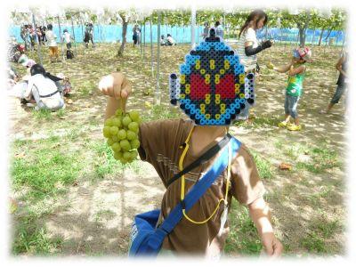 JA『親と子食農体験学習』