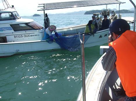 2012底引き大漁かな