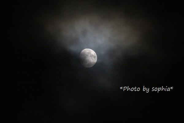 雲の中の十三夜